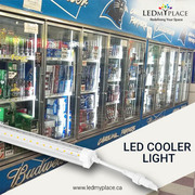 Buy Long lasting LED Cooler Light at Discounted Price.