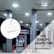 Buy These Dimmable Led Canopy Lights With a Slim and Sleek Design For